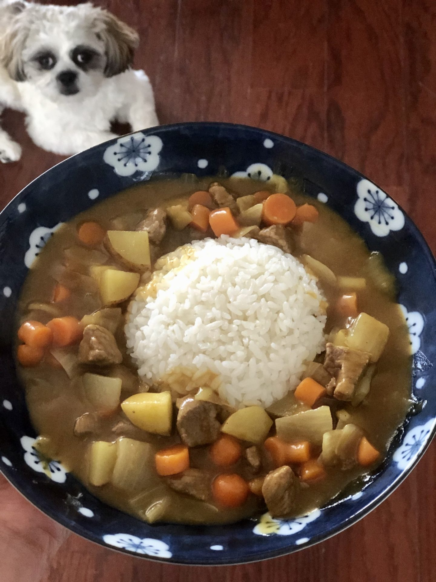 Japanese Curry with beef made with S&B Golden Curry (mild)