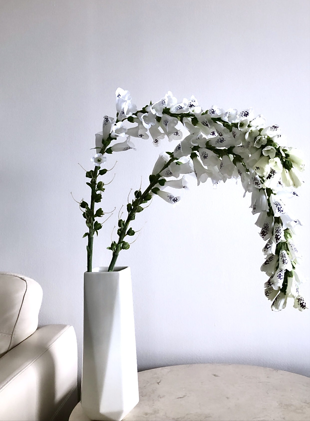 West Elm Faux Foxglove Stem